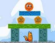 Play Fox n Roll Game