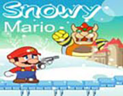 Play Snowy Mario on Play26.COM